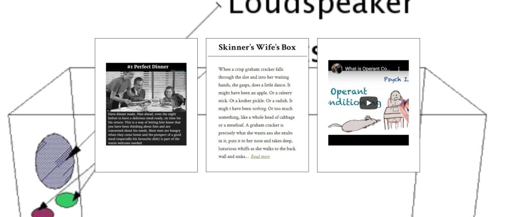 "triptych image for ""skinner's wife's box"""